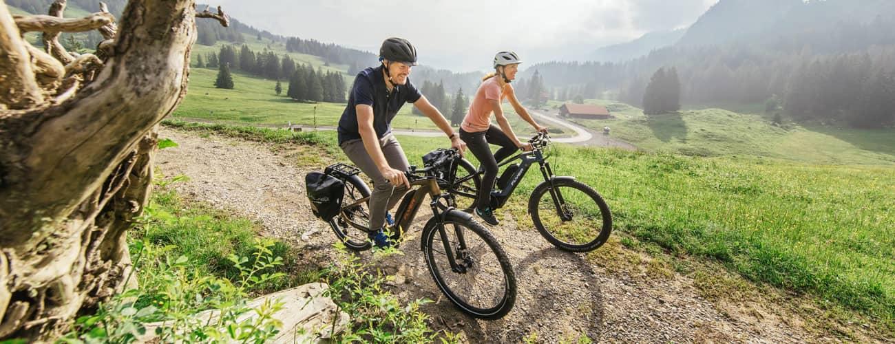 Flyer E-Bike 2020 – Neuheiten